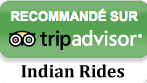 trip_advisor_icon.png